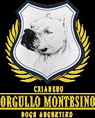 Orgullo Montesino - Melhor Dogo do Brasil 2019